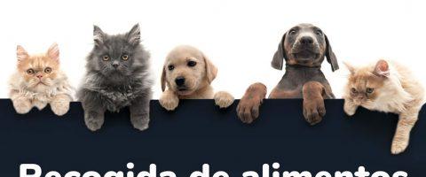 Carrefour evento alimentos mascotas
